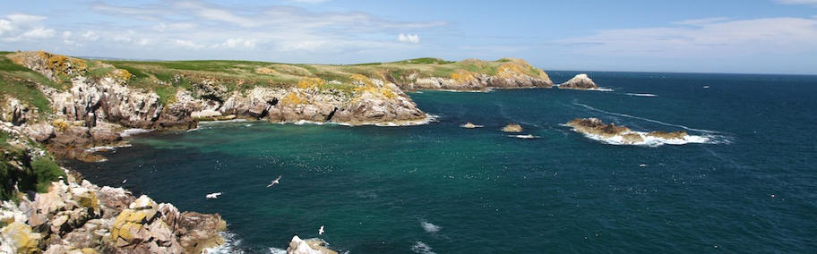 The Saltee Islands, South & East Islands,