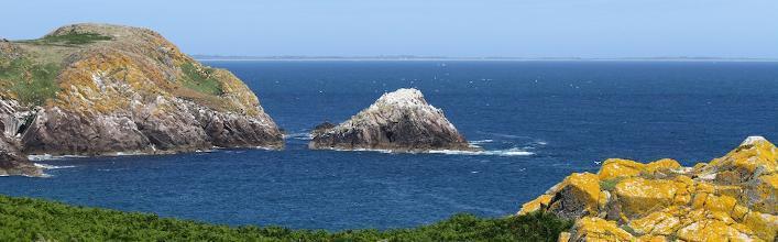 The Saltee Islands