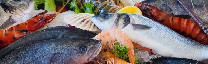 Kilmore Quay Seafood Festival